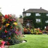 Три уровня растений или как сделать приятный взгляду и легкий в уходе сад