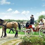 Свадьба в Польше — что может быть лучше проведения свадьбы в одном из самых красивых мест на земле?