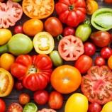 Выбор помидоров