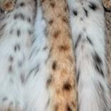 Мех рыси – дорого, эксклюзивно, роскошно!