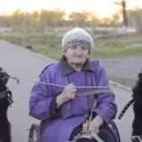 Ей 79 лет, и она разъезжает по городу на собаках