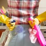 10 умных советов как убрать дом перед приходом гостей