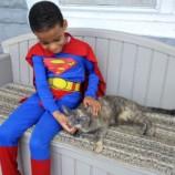 Это Кэтмэн! 5-летний мальчик спасает кошек в костюмах супергероев
