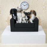 IKEA начала выпускать мебель для домашних животных