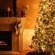 6 идей для новогодней елки от экспертов